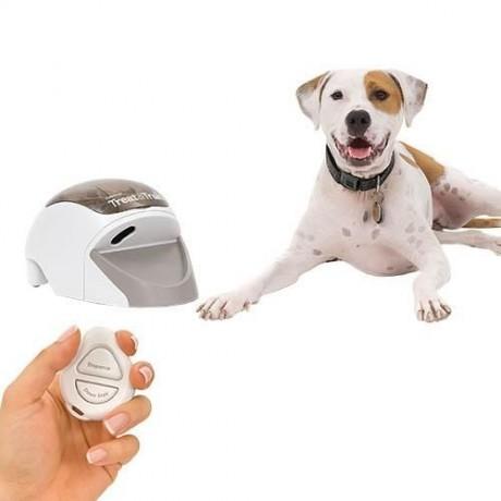 Dispensador de premios a distancia para perro