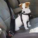 Arnes para perro de coche