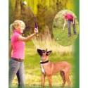 Lanzador de pelotas para perro