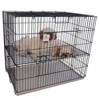 Jaula parque para perro con rejilla