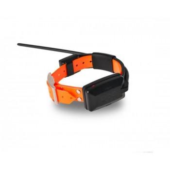 DOG GPS Dogtrace X20 collar adicional