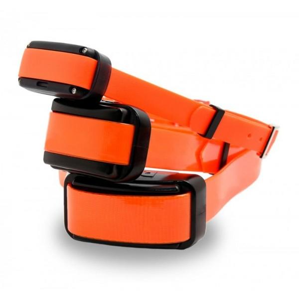 Collar adiestramiento Dogtrace Pro collar adicional